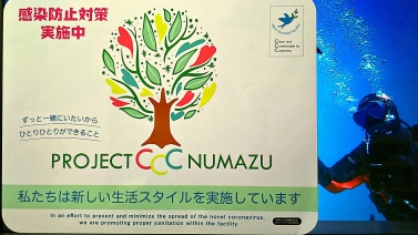 project ccc2