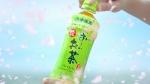 有村架純 伊藤園 お~いお茶「2020年 日本の春」篇 0004