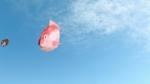広瀬すず 富士フィルム 「お正月を写そう♪2020 ラグビー七福神・音チェキ」篇 0015