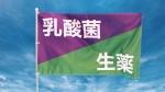 河北麻友子 太田胃散 太田胃散整腸薬 「おなかに自由を」篇 0011