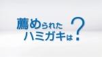 小池栄子 gsk シュミテクト「小池栄子さんは語る・歯周病ケア」 篇 0009