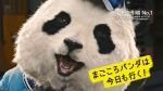 桃月なしこ サカイ引越センター「第1話 まごころパンダ、登場」篇 0022