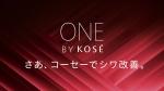 suzukikyoka_kose_shiwa_002.jpg