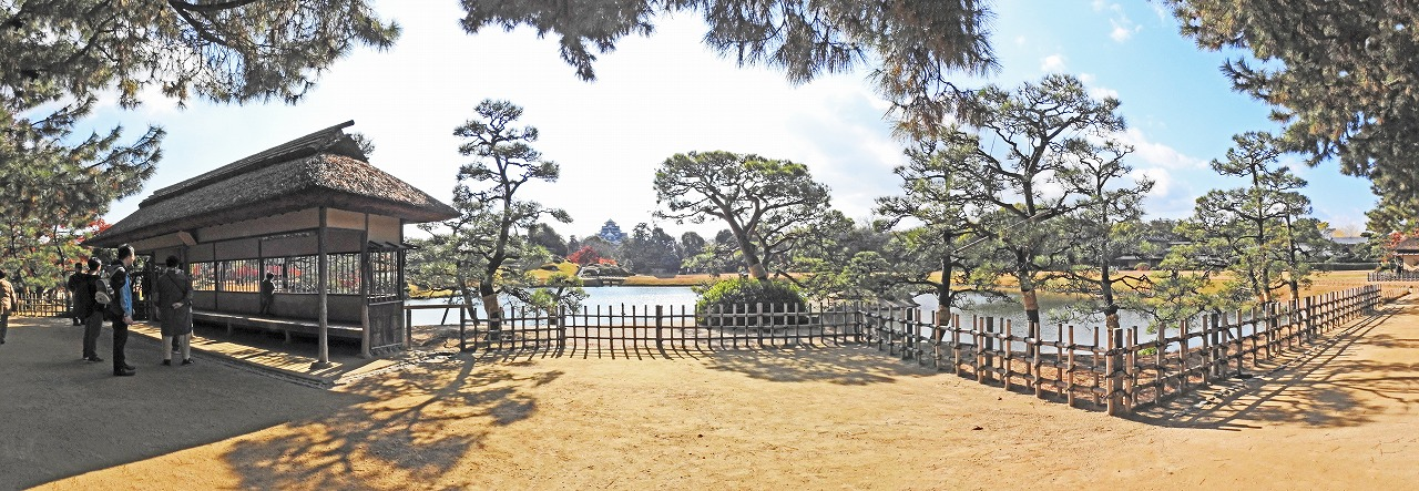 20191204 後楽園今日の観光定番位置の松林側から眺めた園内紅葉の名残ワイド風景 (1)