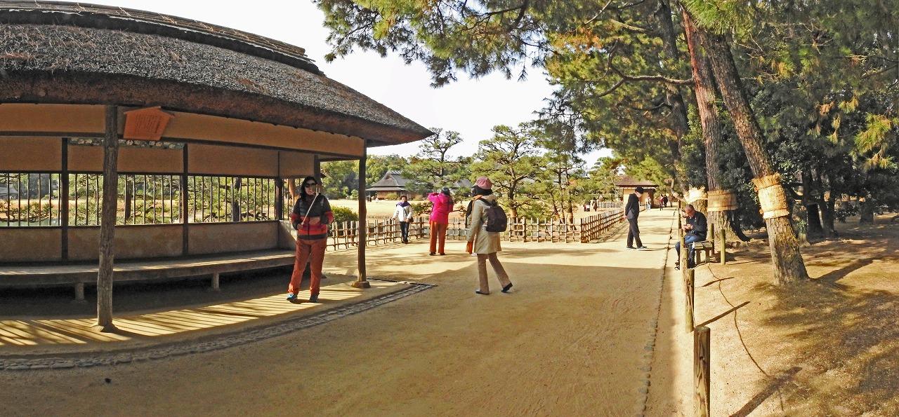 20200119 後楽園今日の五十三次腰掛茶屋前から眺めた園内ワイド風景 (1)