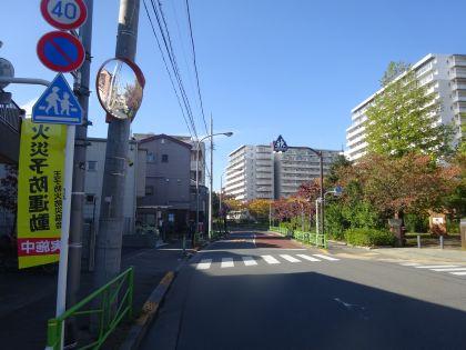 mini_DSC06694.jpg