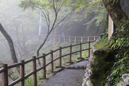 10/20 夢の吊り橋への道