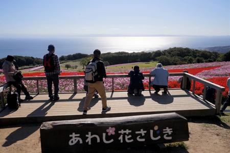 3 花桟敷s