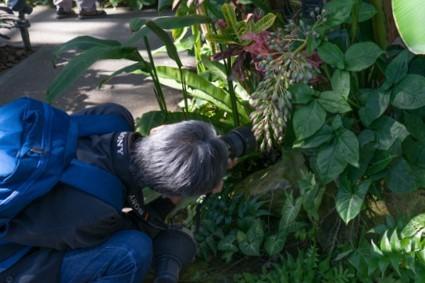 8 植物園2s