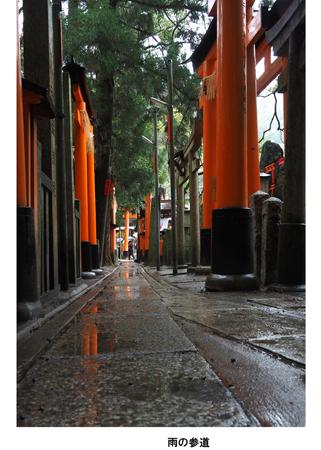11雨の参道