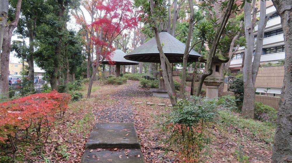 10市役所南庭園IMG_6803