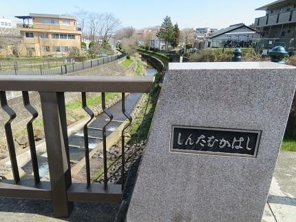 4新田中橋IMG_6999