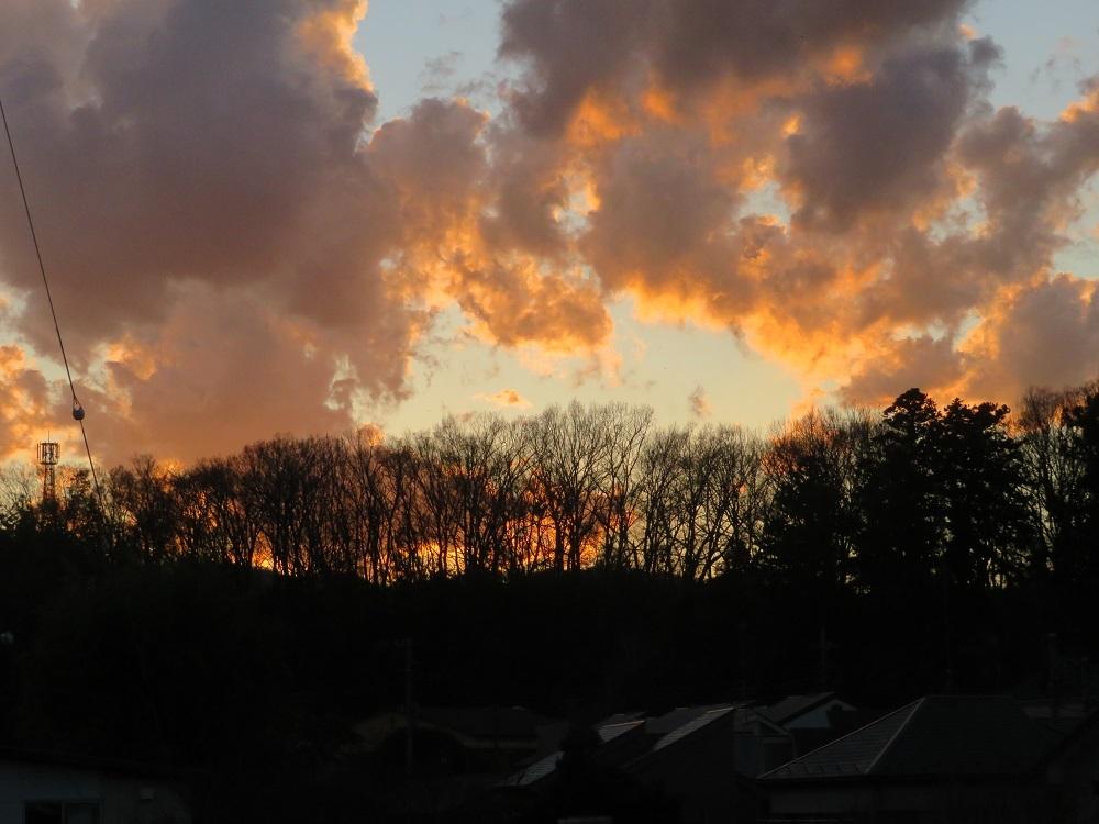 1裏山の向こうに陽が落ちてIMG_6981