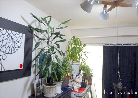 Nantonaku 日除けカーテンは 布をぶら下げただけ2