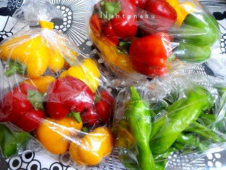 Nantonaku 9-20 昨日の収穫