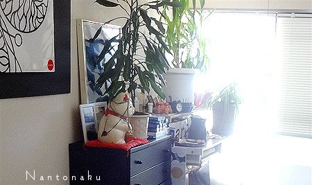 Nantonaku 部屋 朝日がんがん