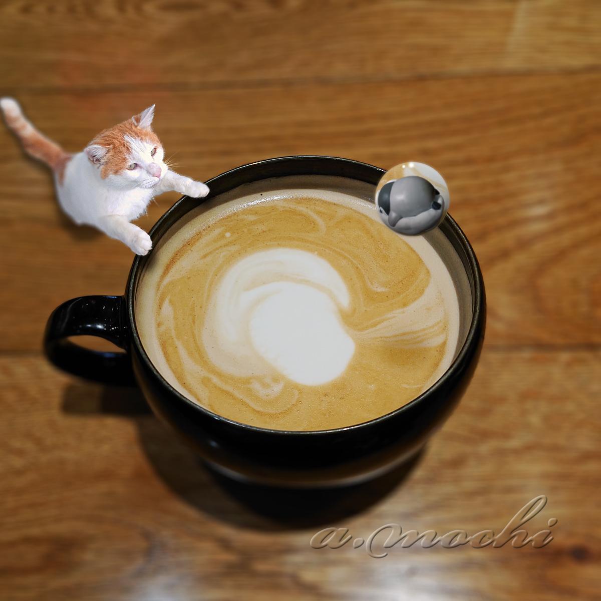 1_siatlecoffee3_sbclate.jpg