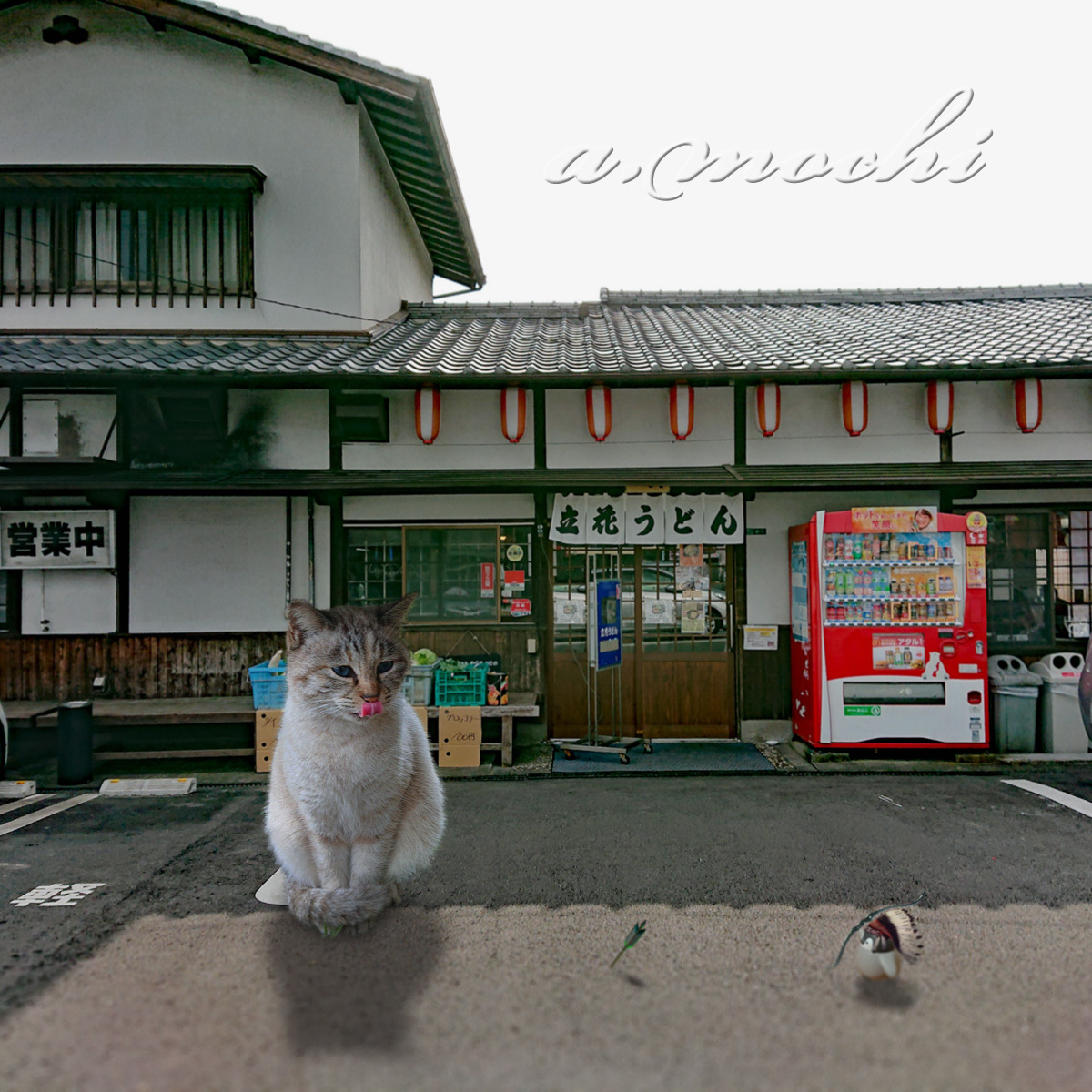 4_tachibana_shop.jpg