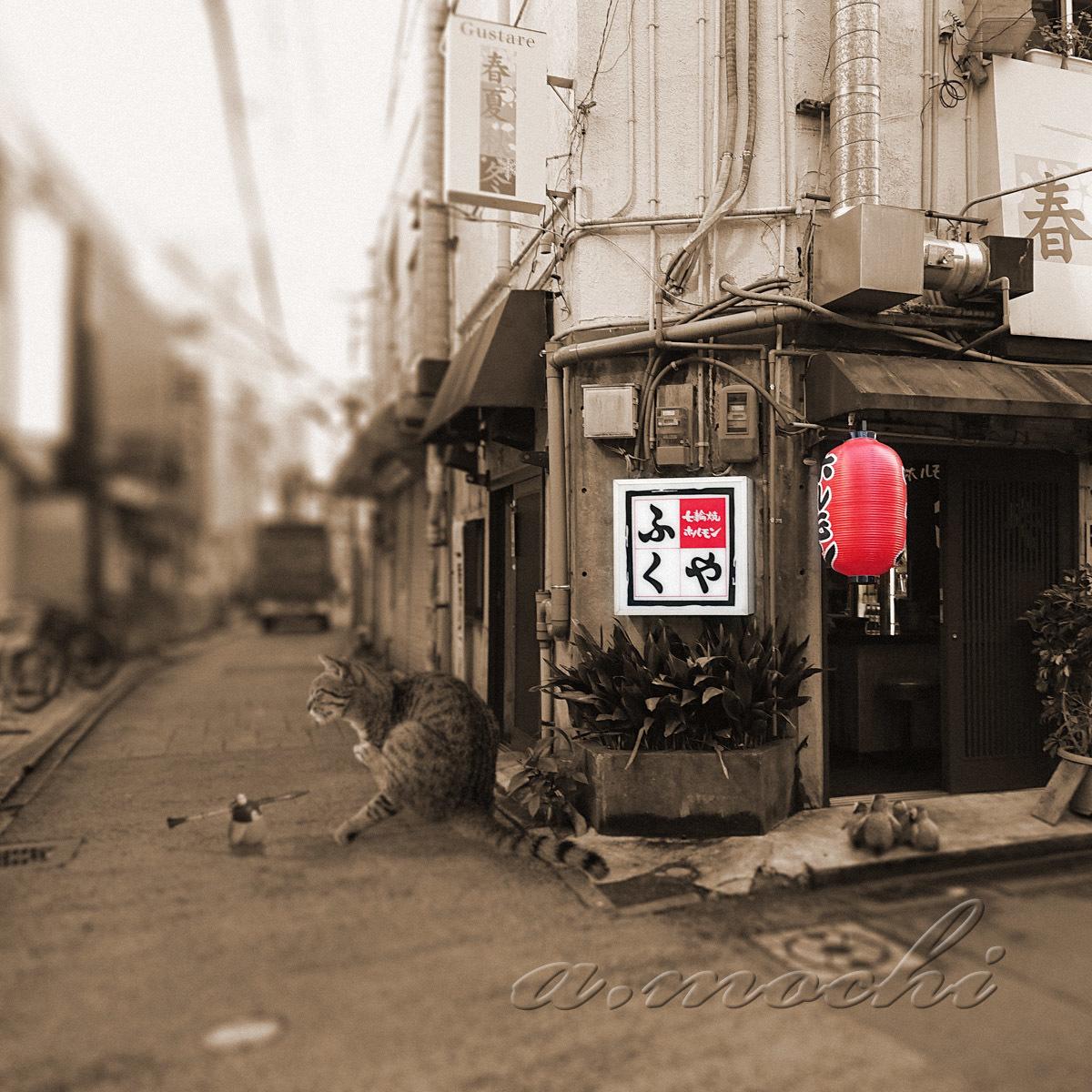 fukuya_shop.jpg