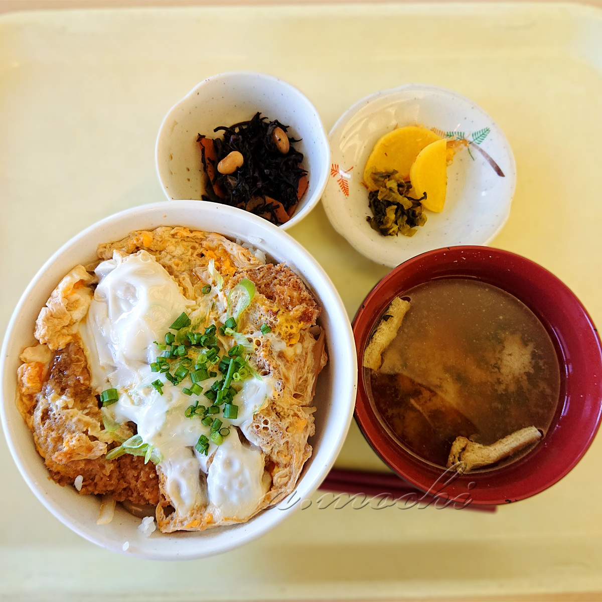 kenkei_katsudon2.jpg