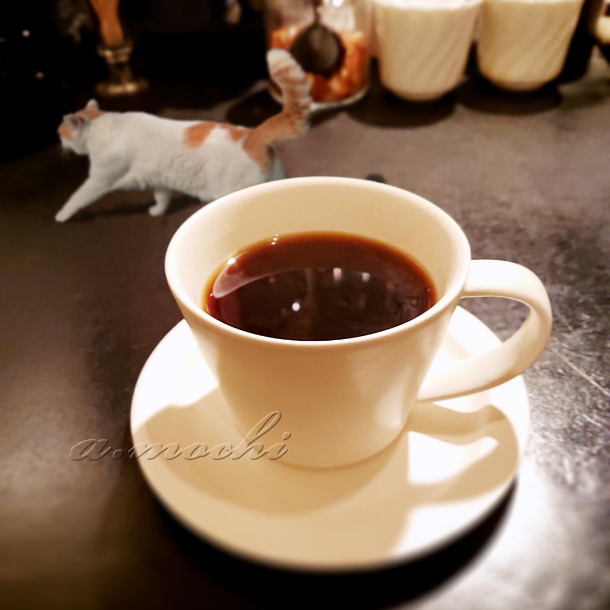magnoria_coffee.jpg