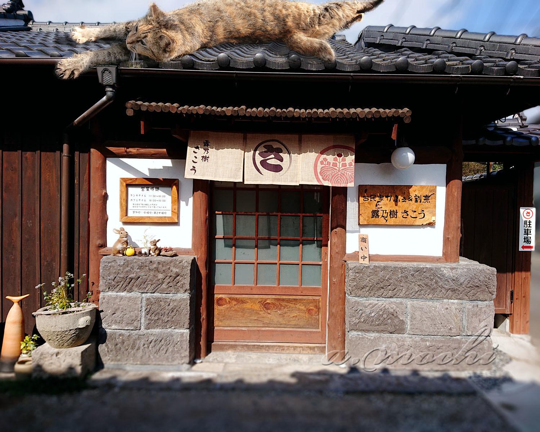 sako_shop.jpg