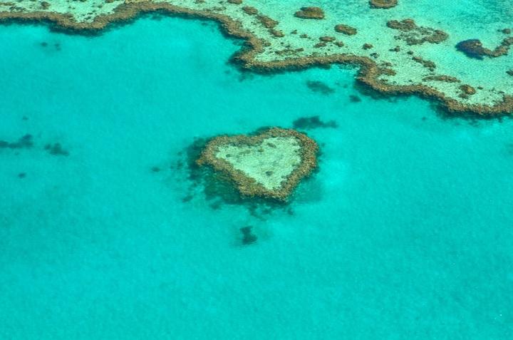 sea-ocean-underwater-heart-biology-romantic-1219458-pxhere-com.jpg
