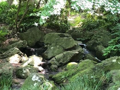 泉谷公園2