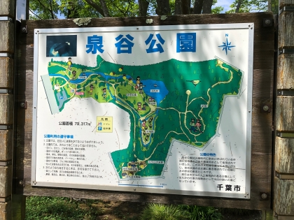 泉谷公園6