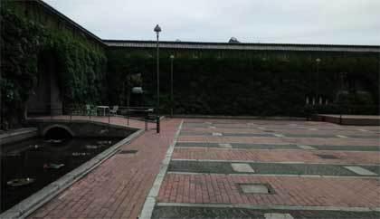 20190529_bikanchiku_025.jpg