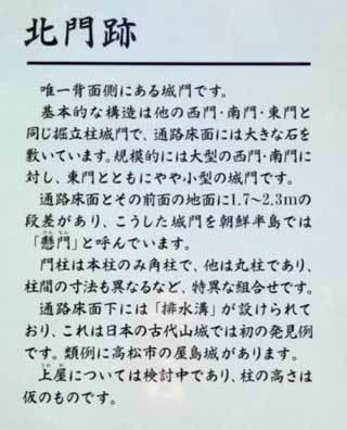 20190529_kinojyou_078.jpg