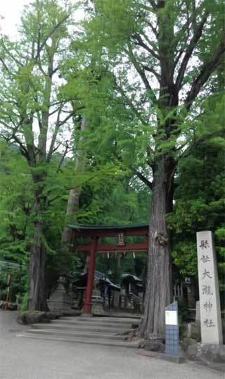 20190609_okamoto_otaki_001.jpg