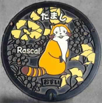 20191101_rascal_manhole_001.jpg