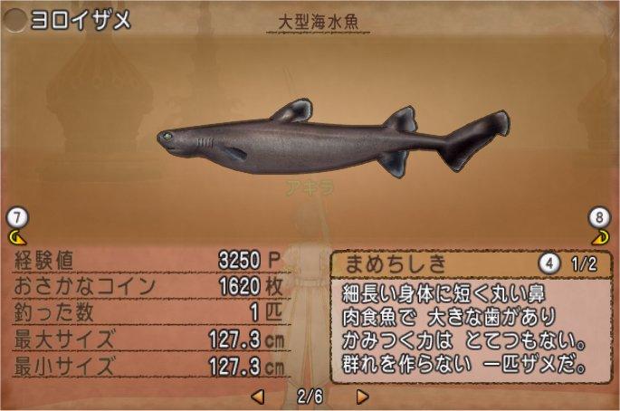 20200130ヨロイザメ