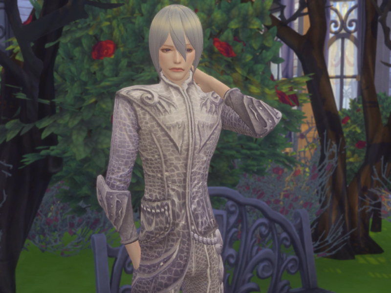 Andromeda High Elf(Male Sim)