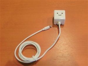 iPhoneの充電器を購入しました
