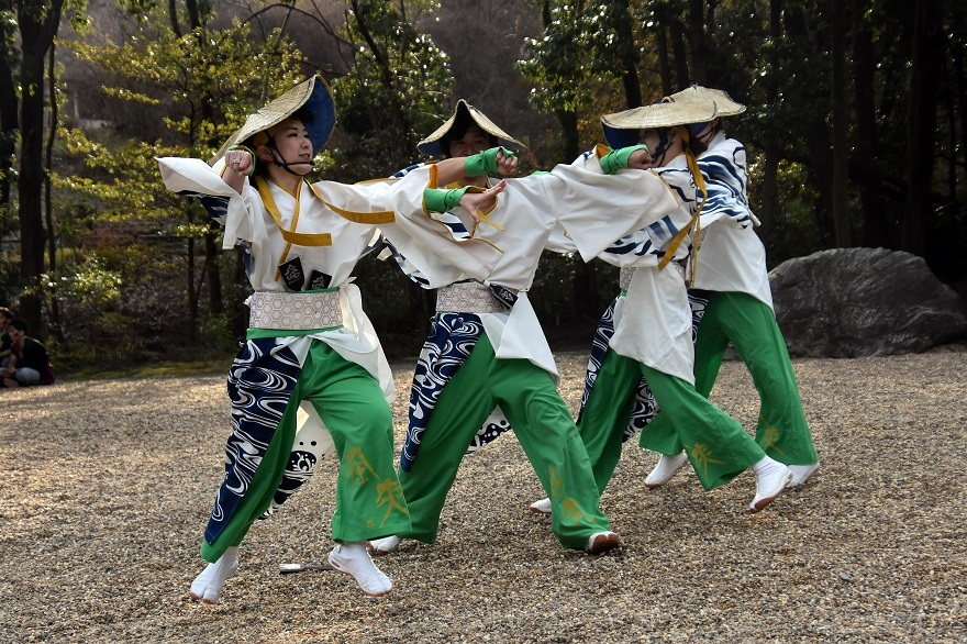 廣田神社よさこい2020・ダイ(8)
