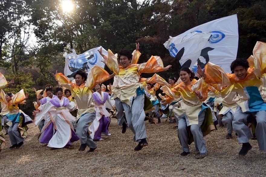 廣田神社よさこい2020・ダイ(12)