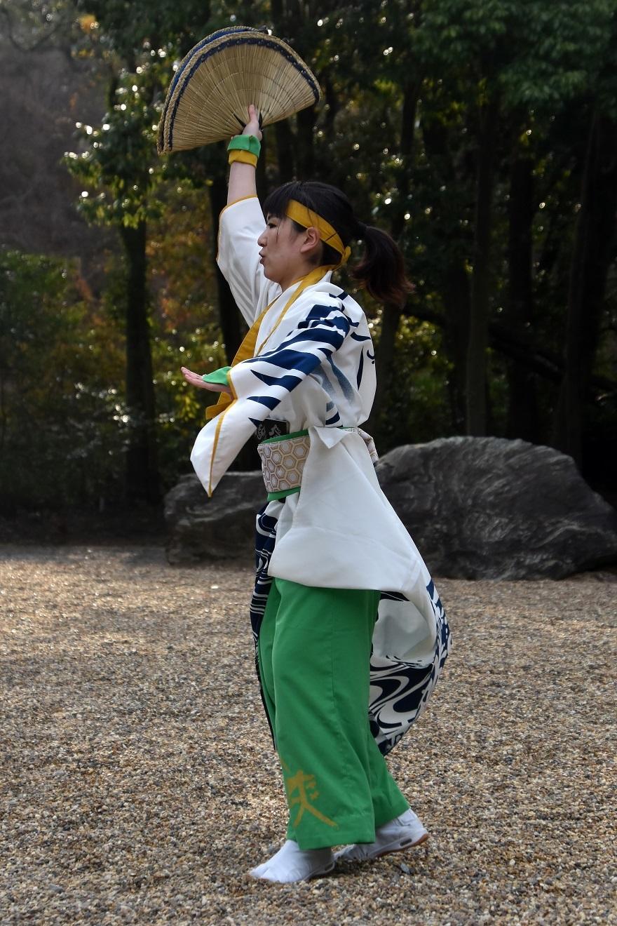廣田よさこい20・颯爽JAPAN (24)