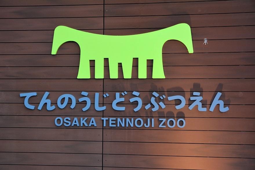 天王寺動物園2020#2 (32)