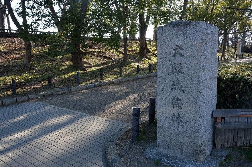 大阪梅園・真冬 (25)
