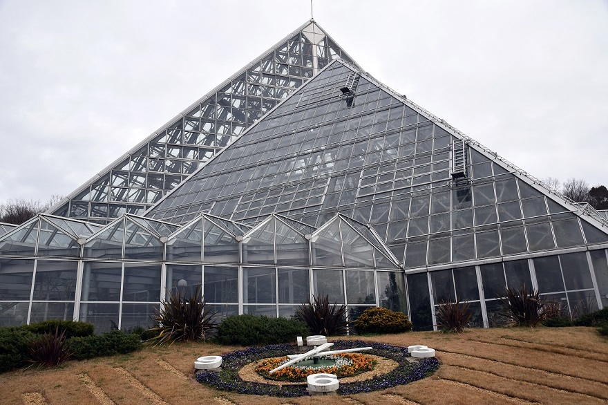 花の文化園・大温室2020 (27)