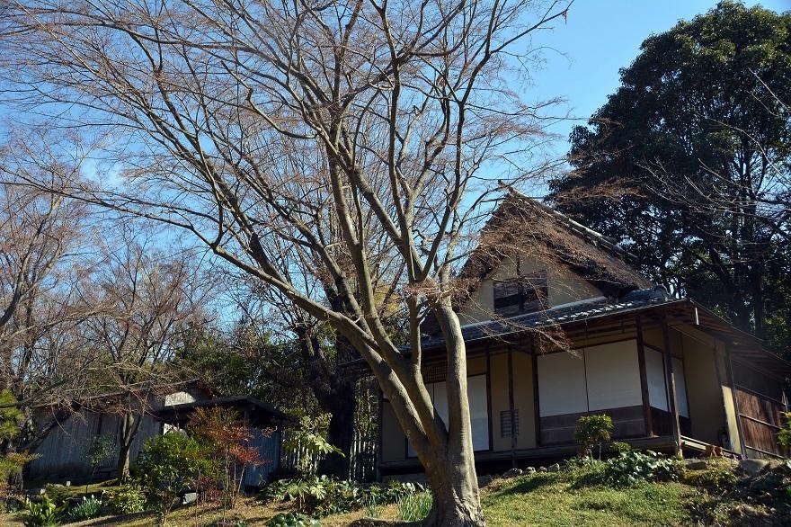 日本民家集落 (31)