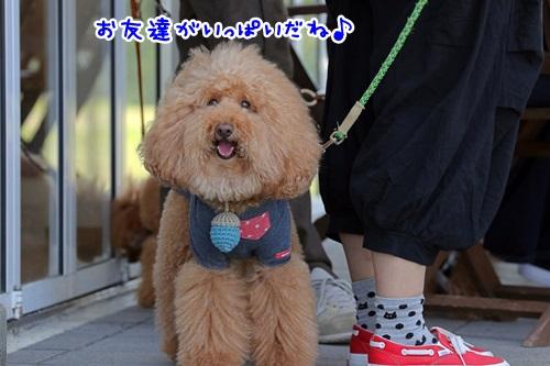 3みゆきちさん