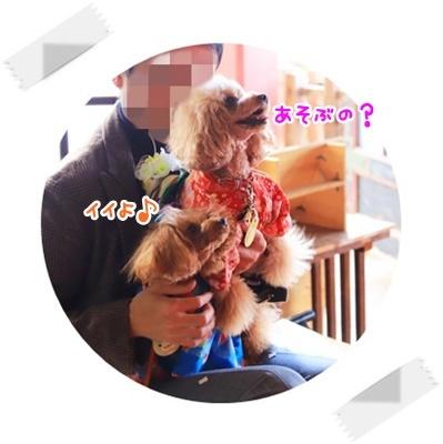 3_2020022711582497b.jpg