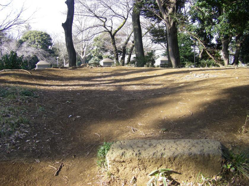 asukayama1top.jpg