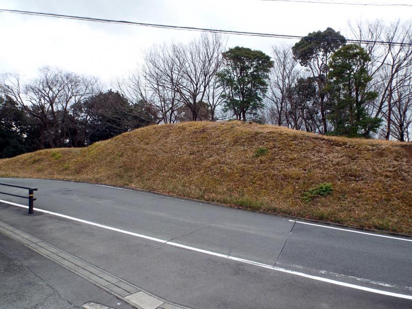 mukaiyama11n.jpg