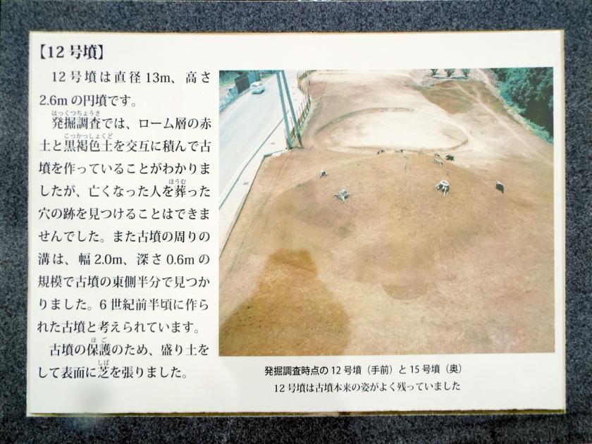 mukaiyama12kaisetu.jpg