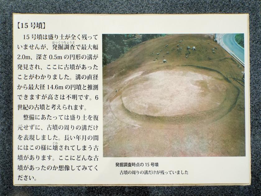 mukaiyama15kaisetu.jpg
