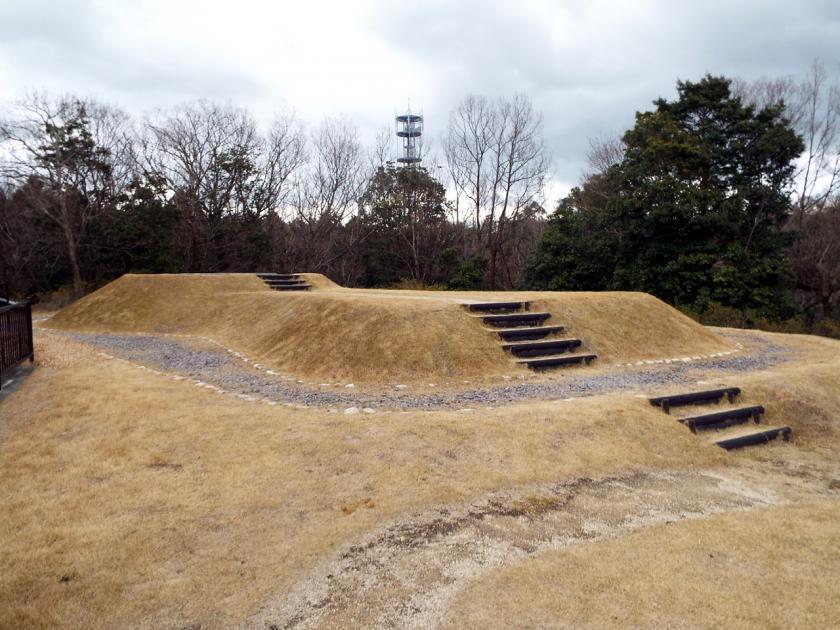 mukaiyama3w.jpg